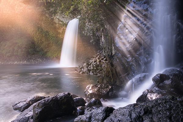 photographie par Gko Prod Reunion bassin tourisme flore